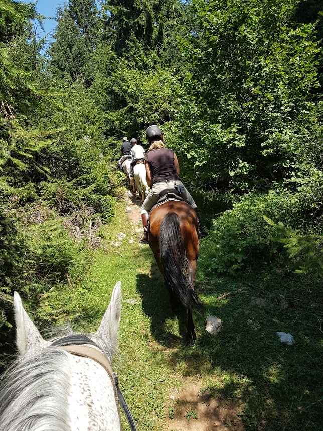 Horseback riding in the nature in Sarajevo